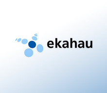 Ekahau – flash website 2008